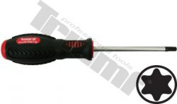 Skrutkovač Torx - nevŕtaný - T25 x 100 mm